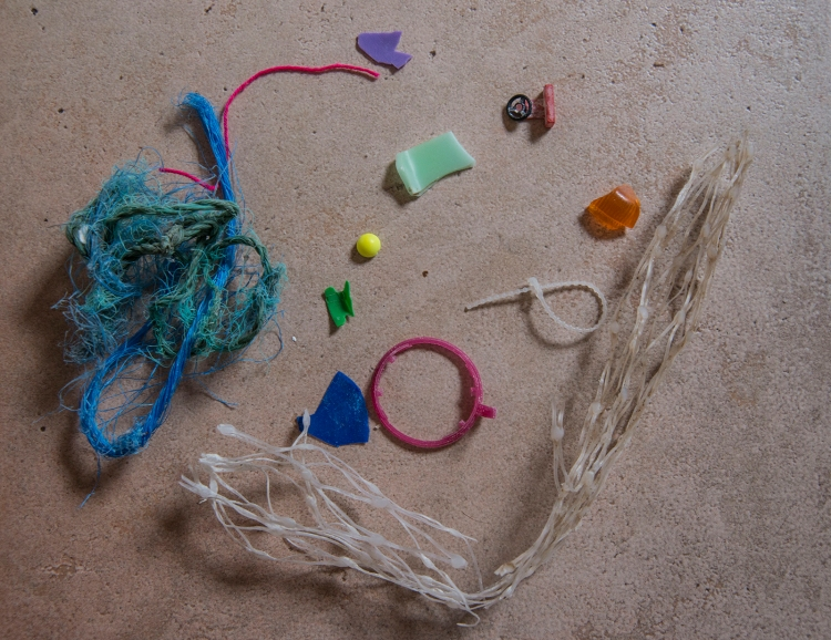 Plastic litter collected on the beach